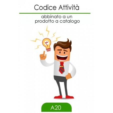 CA Codice Attività
